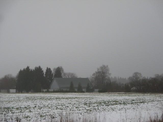 Asulakoht jätkuvalt kasutusel asulakohana. Vaade edelast. Foto: M. Mutso, 27.11.2014.