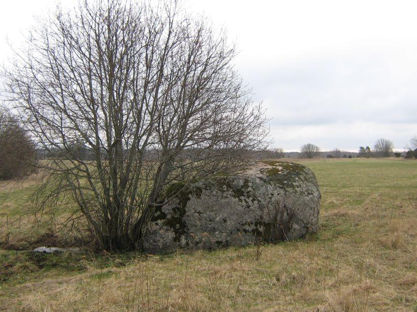 Vaade kivile loodest  Autor Ulla Kadakas  Kuupäev  17.04.2008