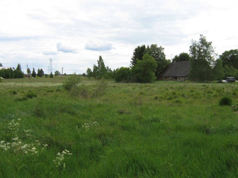 Vaade põhjast  Autor Ulla Kadakas  Kuupäev  13.06.2008