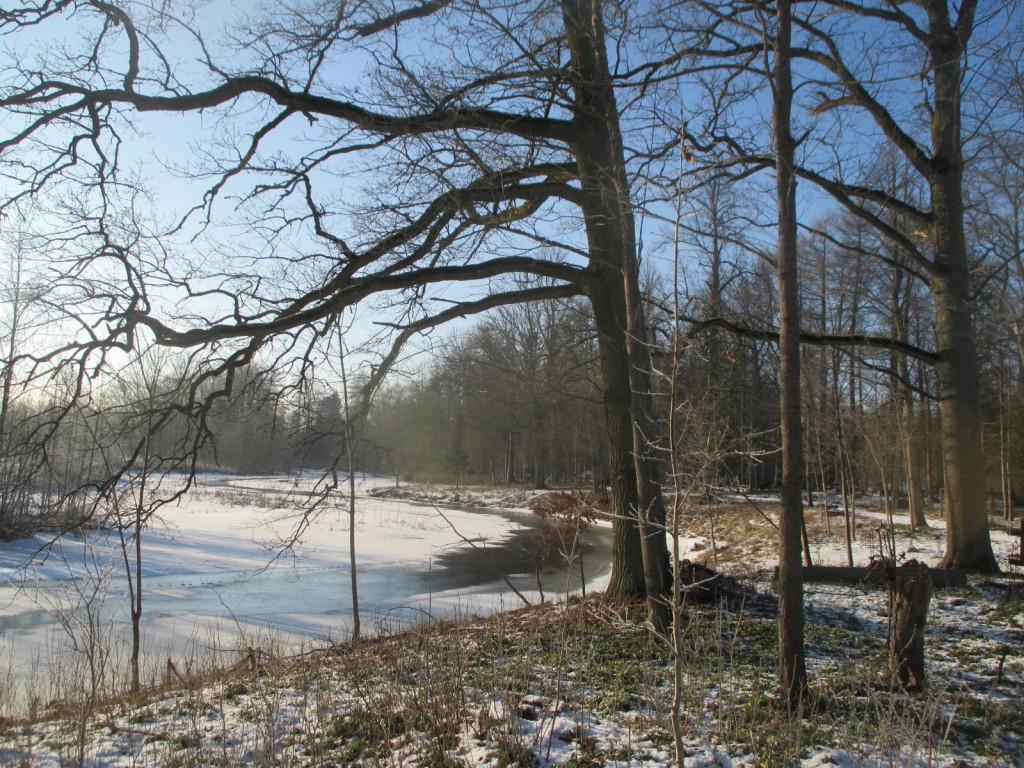 Kalmistuga külgnev jõekallas.