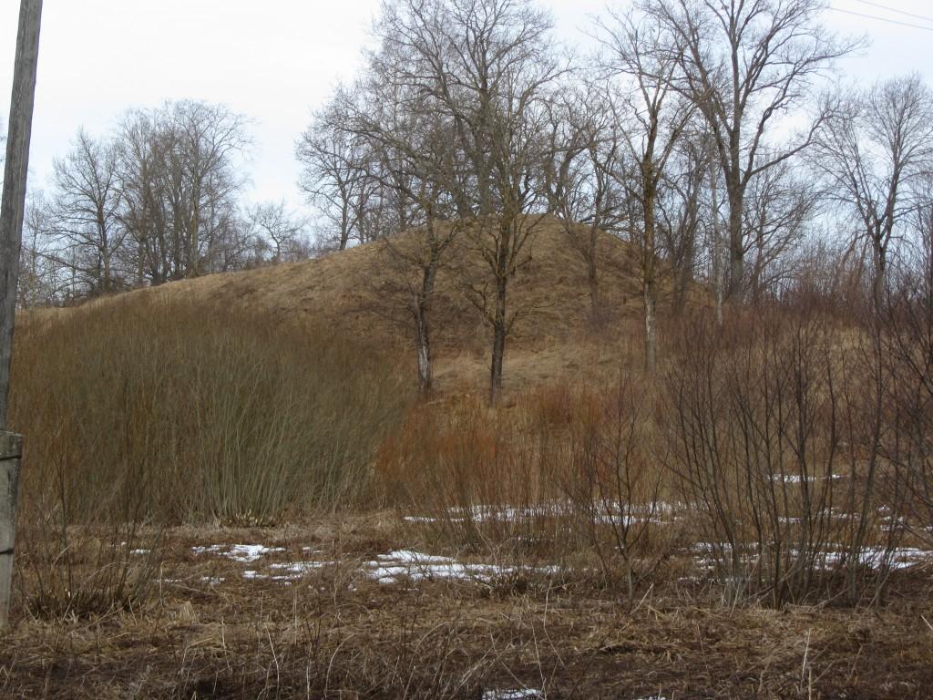 """Linnus """"Kalevipoja säng"""" reg nr 12784, vaade kagust. Foto: Ingmar Noorlaid, 06.03.2015."""