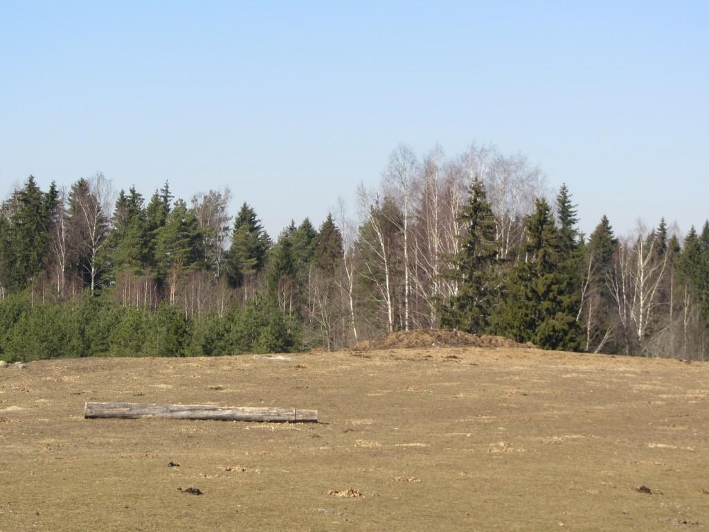 """Kalmistu """"Jaanimägi"""" reg nr 13104, 17.03.2015. Foto: Ingmar Noorlaid"""
