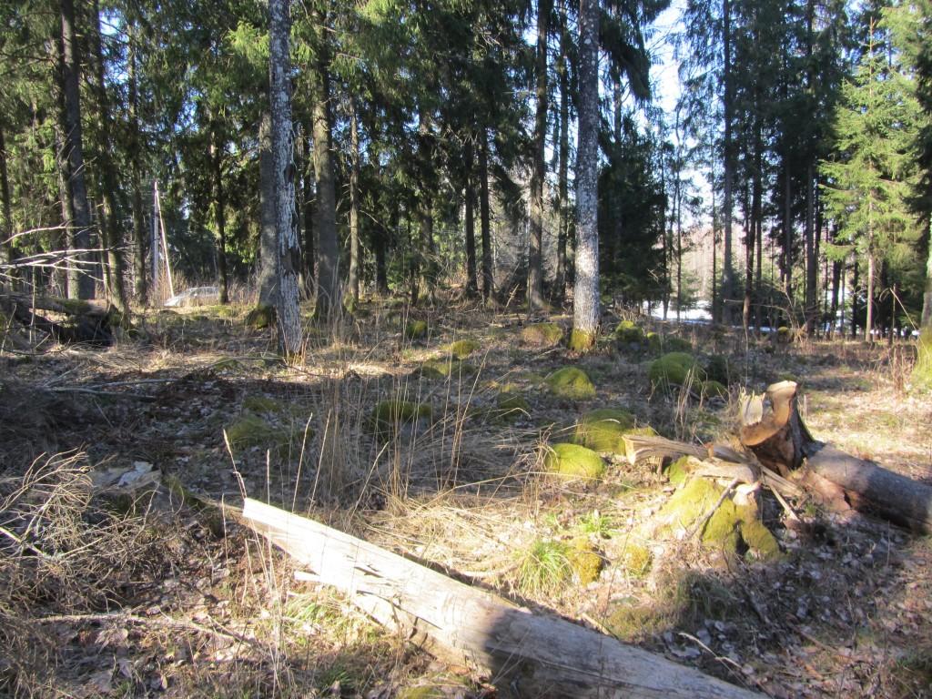 Kivikalme reg nr 13168, 17.03.2015, Foto: Ingmar Noorlaid