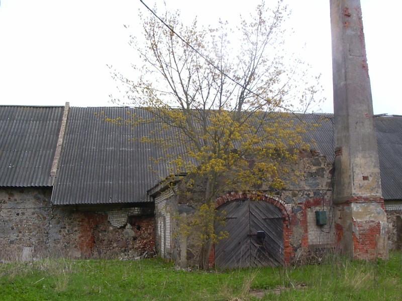 Rehi  Autor Sille Raidvere  Kuupäev  09.05.2007