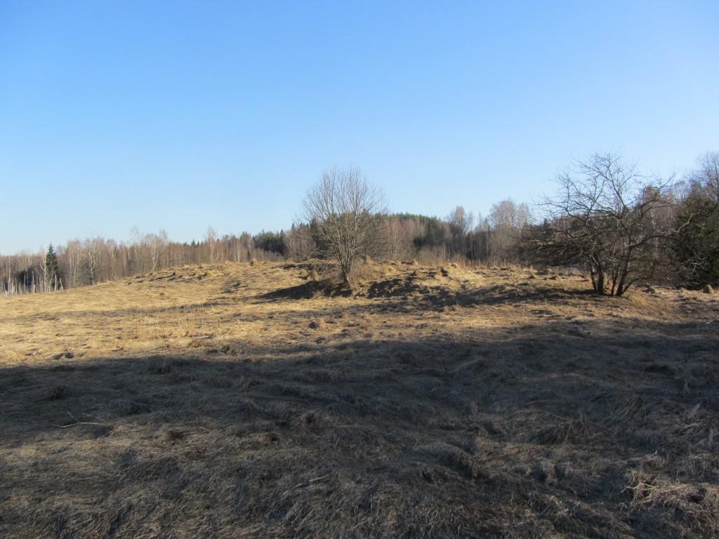 Kalmistu reg nr 13159, vaade edelast, 17.03.2015. Foto: Ingmar Noorlaid