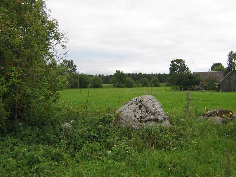 Vaade asulakoha poole kirdest, Uuetoa talu piirilt.  Autor Ulla Kadakas  Kuupäev  09.08.2008