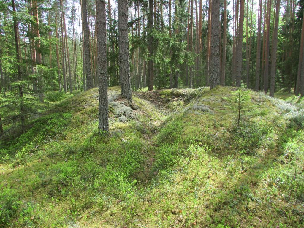 Vaade kääpale. XX sajandi 20-ndate aastate arheoloogilise kaevamiste jälg 20.05.2015 Viktor Lõhmus