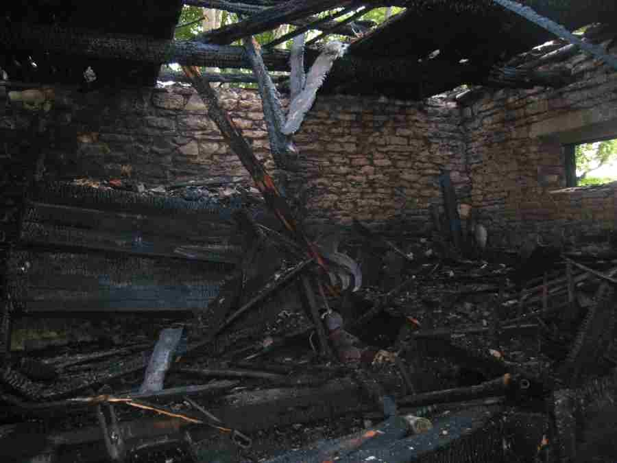 põlengus kannatada saanud tornikukk. Foto: Rita Peirumaa, 04.09.2008