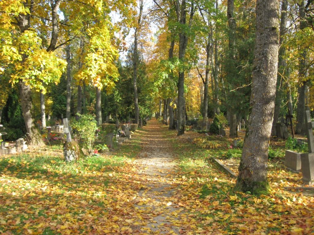 Kalmistu  Autor Sille Raidvere  Kuupäev  30.09.2008