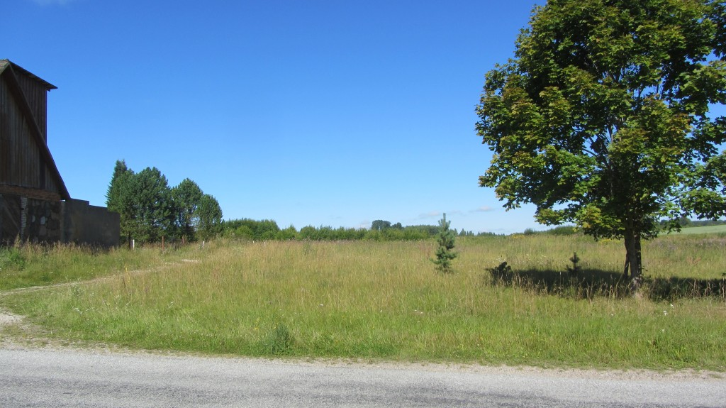 Kalmistu reg-nr 13017, 6.08.2015. Foto: Ingmar Noorlaid
