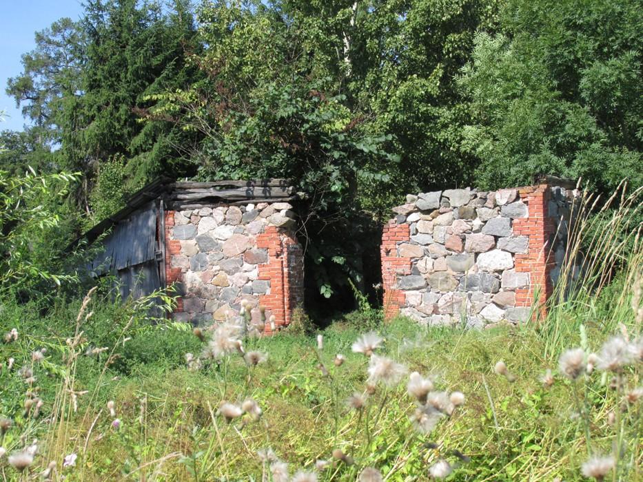 Vaade karjalauda varemetele ida suunast. Foto Kadi Mõttus, 11.08.2015.