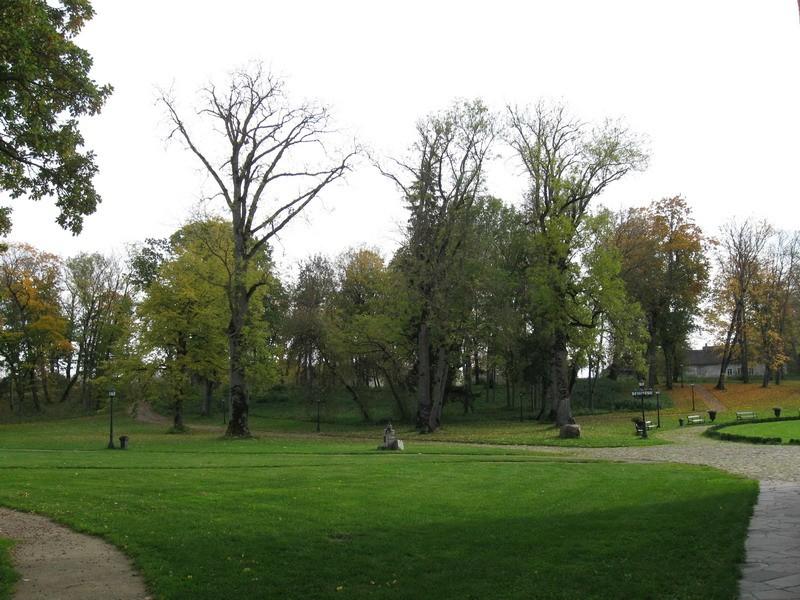 Kalvi mõisa park, 19.-20.saj.  Autor Tõnis Taavet  Kuupäev  01.10.2008