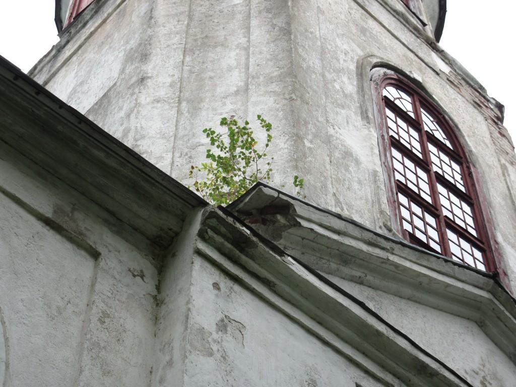 Kodavere kirik, karniis Foto: Sille Raidvere Aeg: 26.08.2015