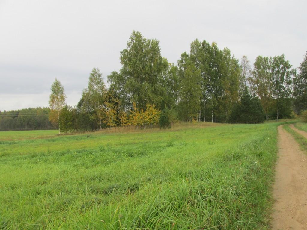 Kalmistu, 16.-17. saj. Vaade lõunast. Foto: Kalle Merilai 25.09.2015