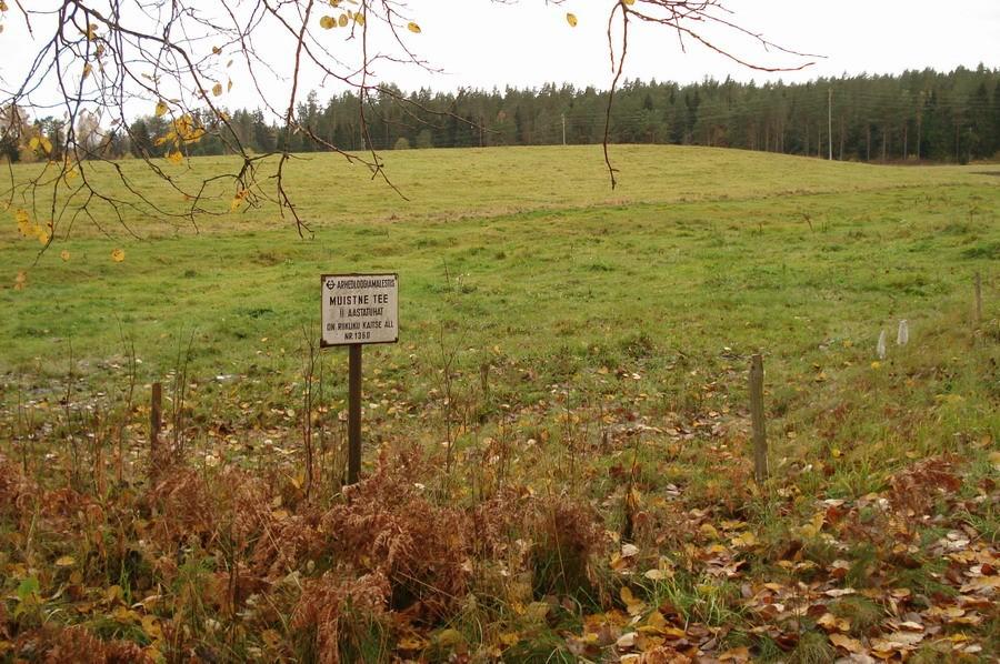 """Vaade """"Tõrvamäele"""" lõunast. Foto: Karin Vimberg, 10.10.2008."""