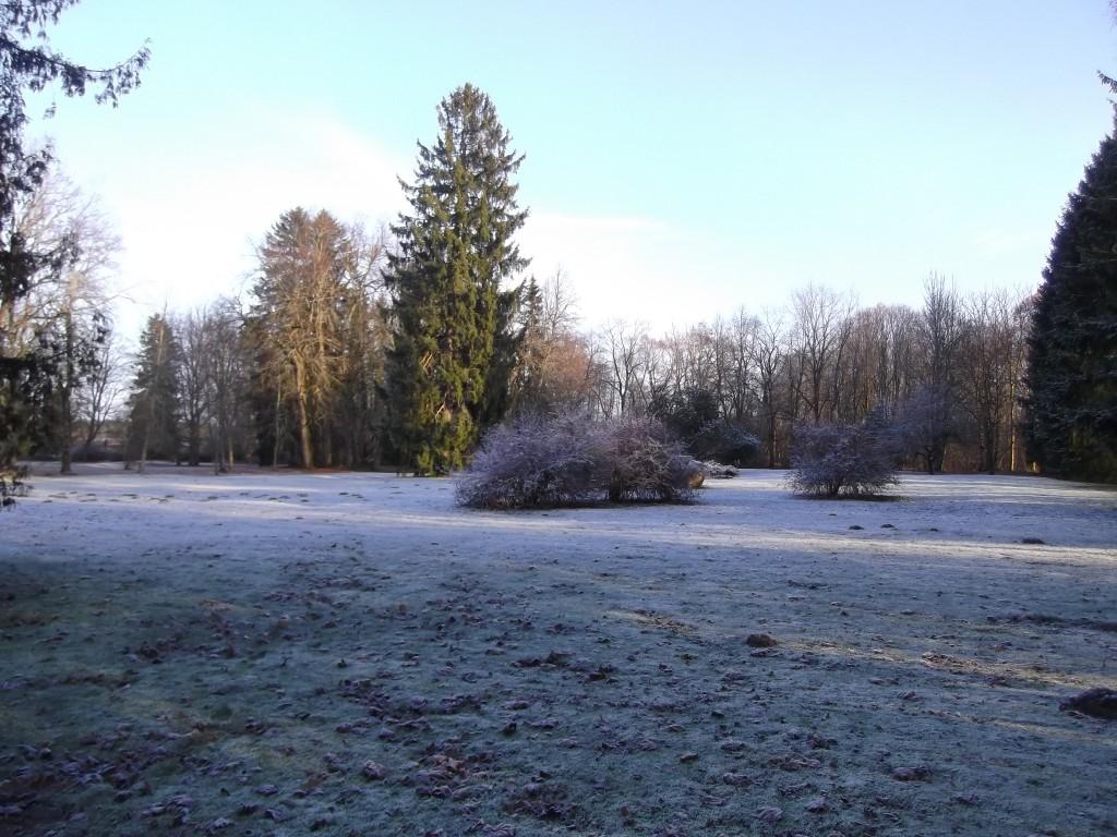 Pargi idaosa. Foto Silja Konsa 21.11.14.