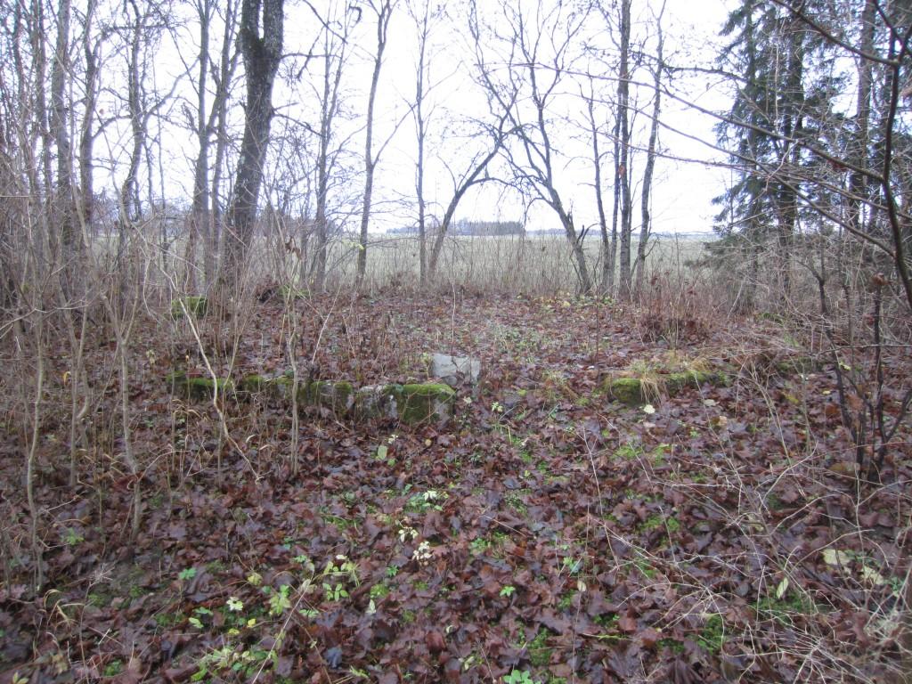 Vaade vundamendile Aaspere mõisa peahoone suunast. 20.11.2015