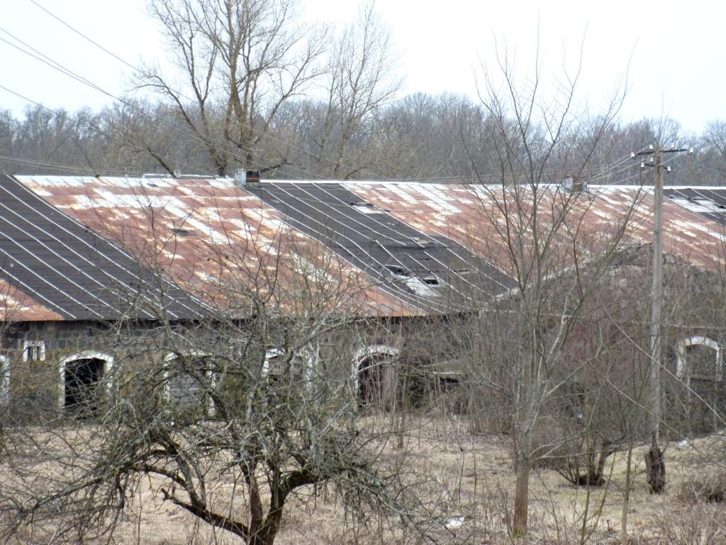 Kuremaa mõisa laut 2, avariilise katusega tagakülg Foto: Sille Raidvere Aeg: 27.03.2015