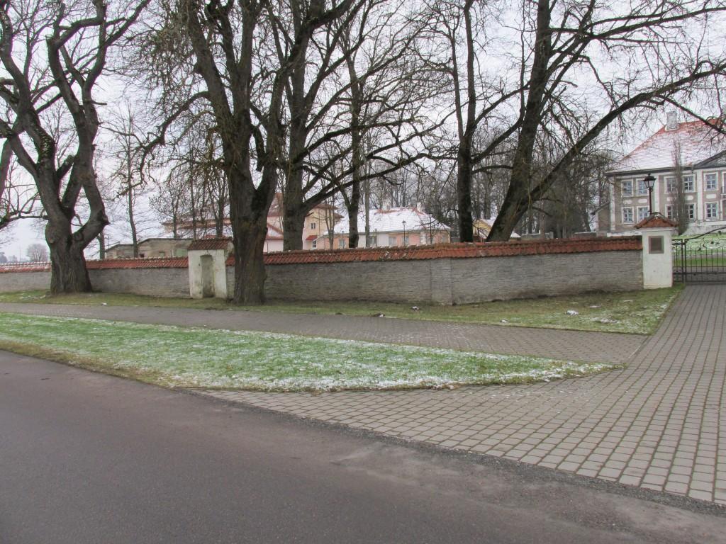 Maidla mõisa park,18.-19.saj. Esiväljakul kasvavad üksikud vanad puud. Foto: Kalle Merilai 25.11.2015. a.