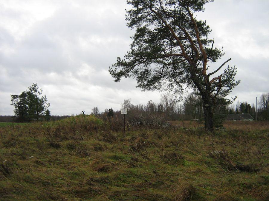 Kivikalme reg nr 13241. Foto: Anne Kivi, 28.10.2008.