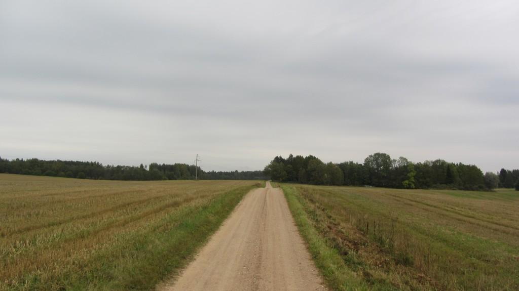 "Kalmistu ""Kabelikink"" reg-nr 12990, 22.10.2015. Foto: Ingmar Noorlaid"