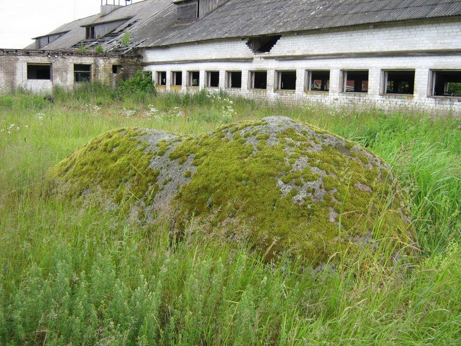 Ohvrikivi reg nr 13276. Foto: Anne Kivi, 18.06.2008.