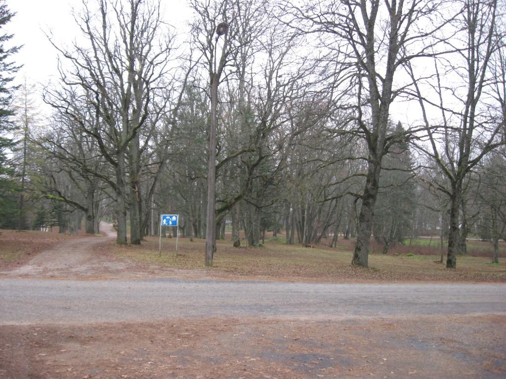 Park hilissügisel  Autor Sille Raidvere  Kuupäev  09.11.2008
