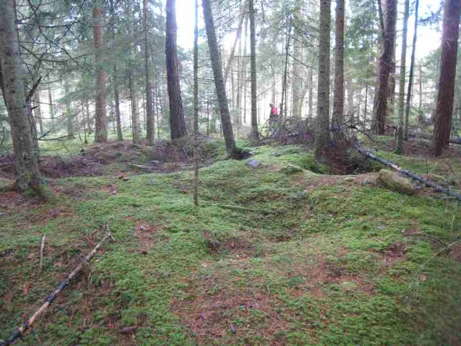 Kivikalme. Foto: Rita Peirumaa, 17.11.2008.