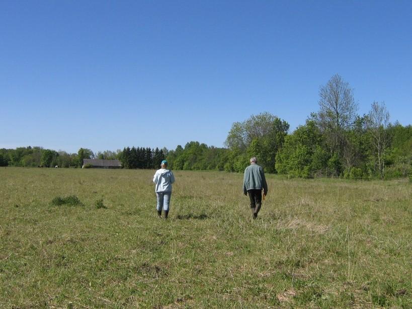 Vaade asulakoha põhjaosast lõuna suunas.  Autor Ulla Kadakas  Kuupäev  29.05.2008