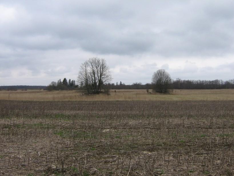 Vaade kalmetele 18115 ja 18116 idast.  Autor Ulla Kadakas  Kuupäev  17.04.2008