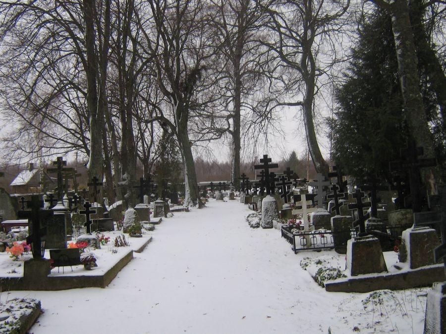 Autor Reelika Niit  Kuupäev  20.11.2008