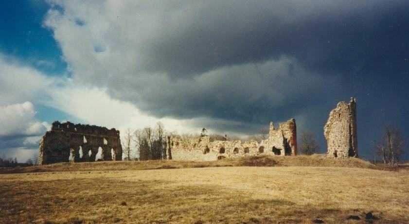 Laiuse linnus, vaade lõunast. Foto: J. Tamm 08.04.1997