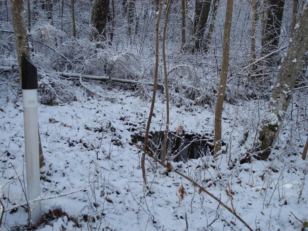 Vaade ohvriallikale. Foto: Karin Vimberg, 21.11.2008.