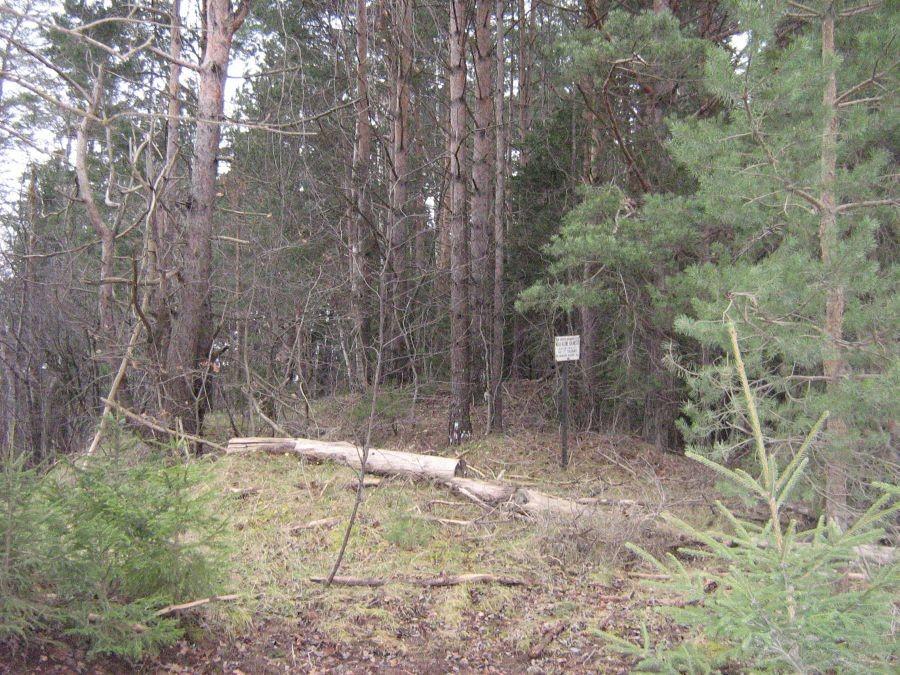 Kalmemägi. Foto: Anne Kivi, 13.11.2008.