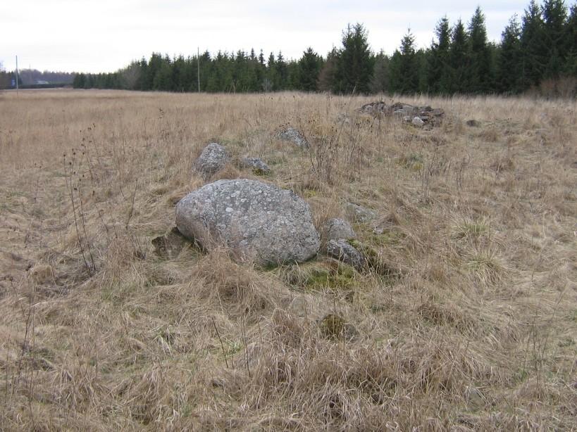 Vaade põhjast.  Autor Ulla Kadakas  Kuupäev  17.04.2008