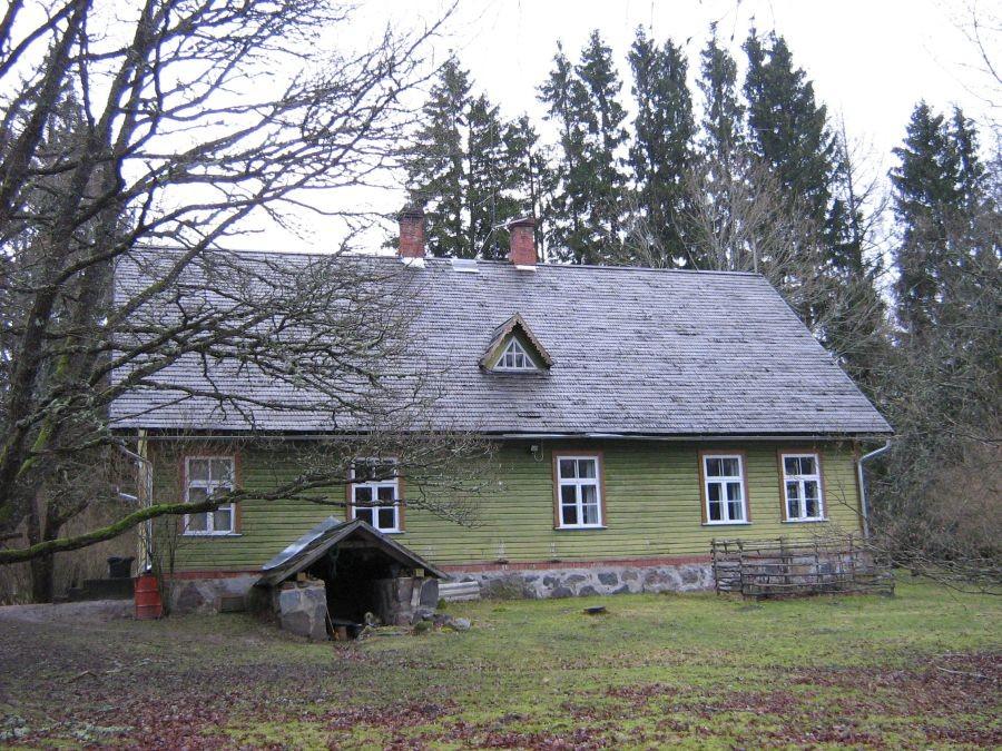 tagantvaade  Autor Anne Kivi  Kuupäev  03.12.2008