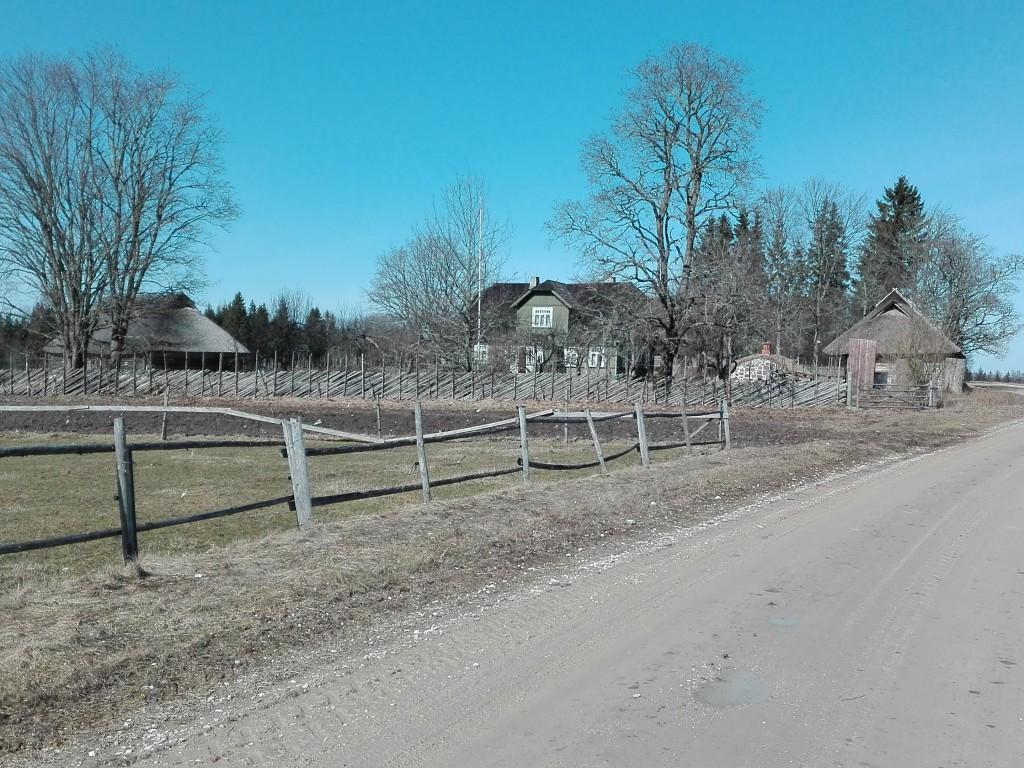 Vaade Tammsaare-Põhja talule lõuna poolt. Foto: K. Klandorf 04.04.2016.
