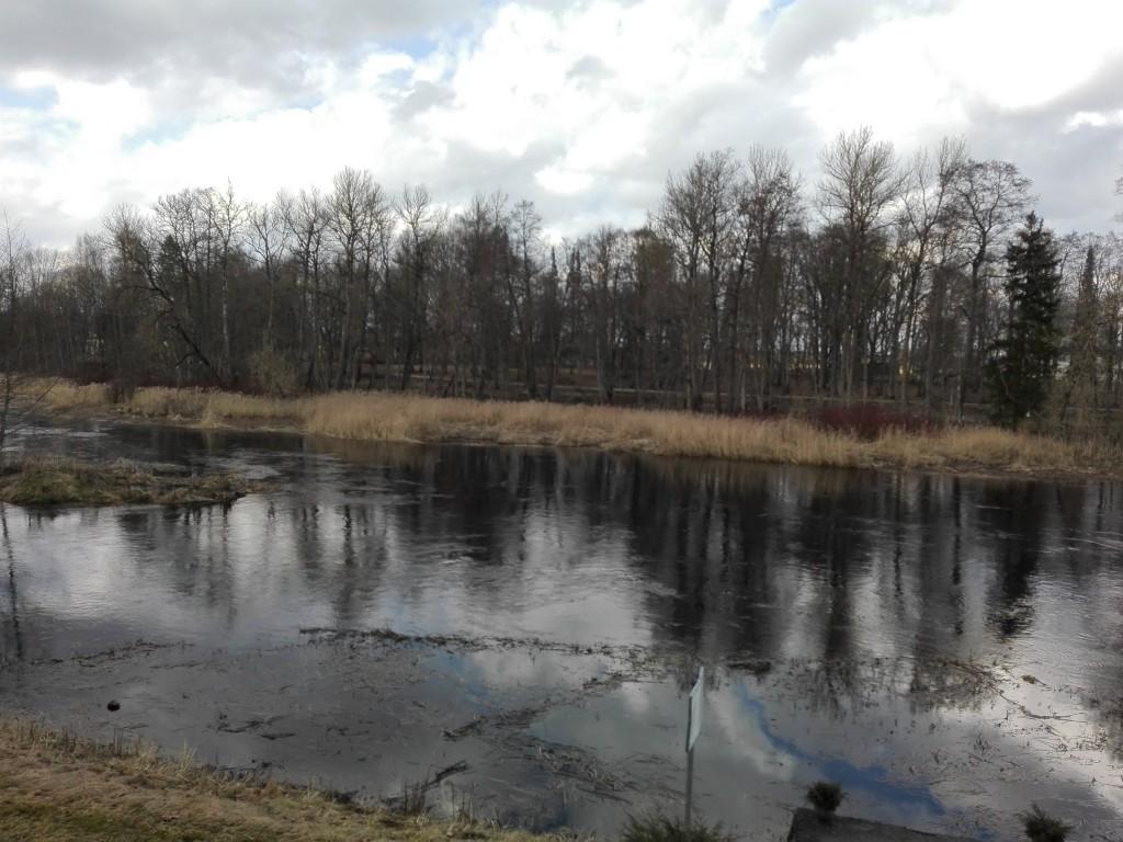 Laupa mõisa park, vaade mõisa peahoone juurest üle jõe asuvale pargi osale. Foto: K. Klandorf 08.04.2016.