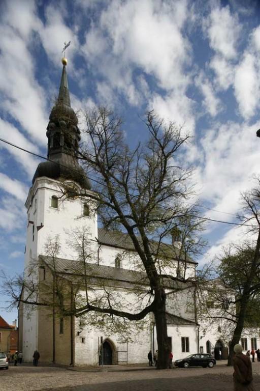 Foto: A. Maasik, 2009.a