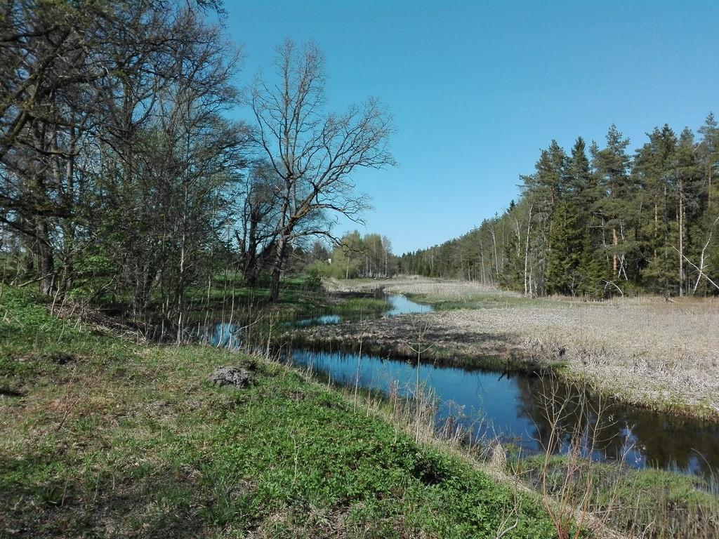 Vaade Purdi mõisa pargi idapiiriks olevale Pärnu jõele. Foto: K. Klandorf 09.05.2016.
