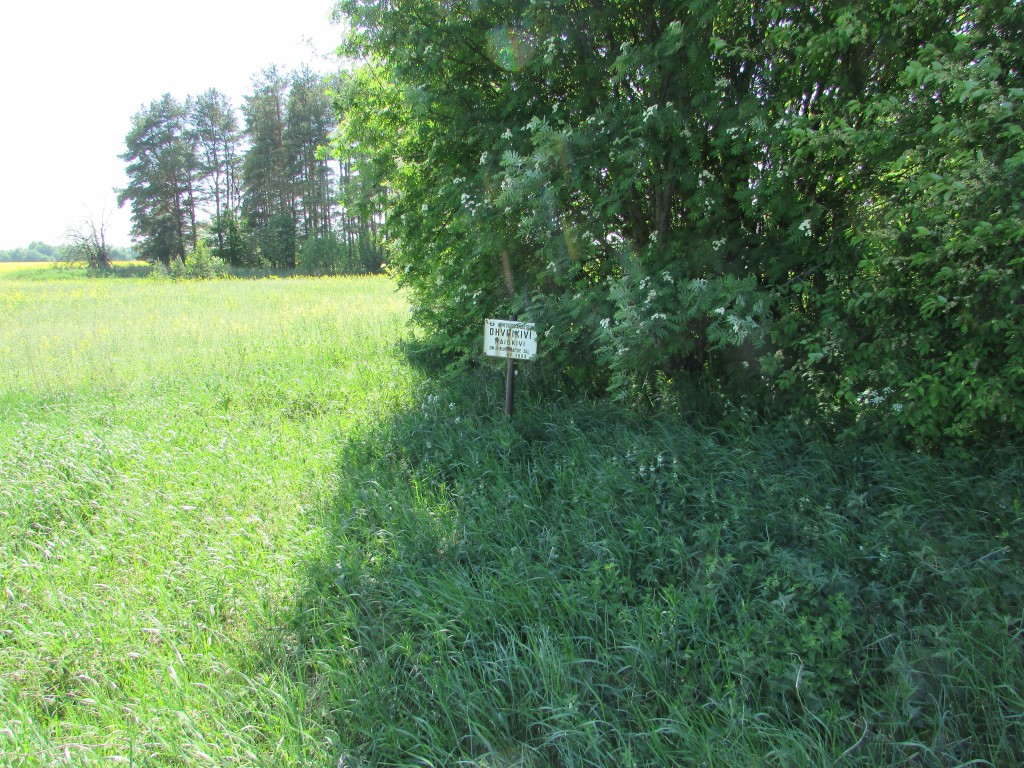 ''Naiskivi'', reg-nr 10894, vaade kirdest tee pealt. Kivi ise ei ole näha, sest on nii väike, tähisest paremal. Foto 25.05.2016, A.Kivirüüt.