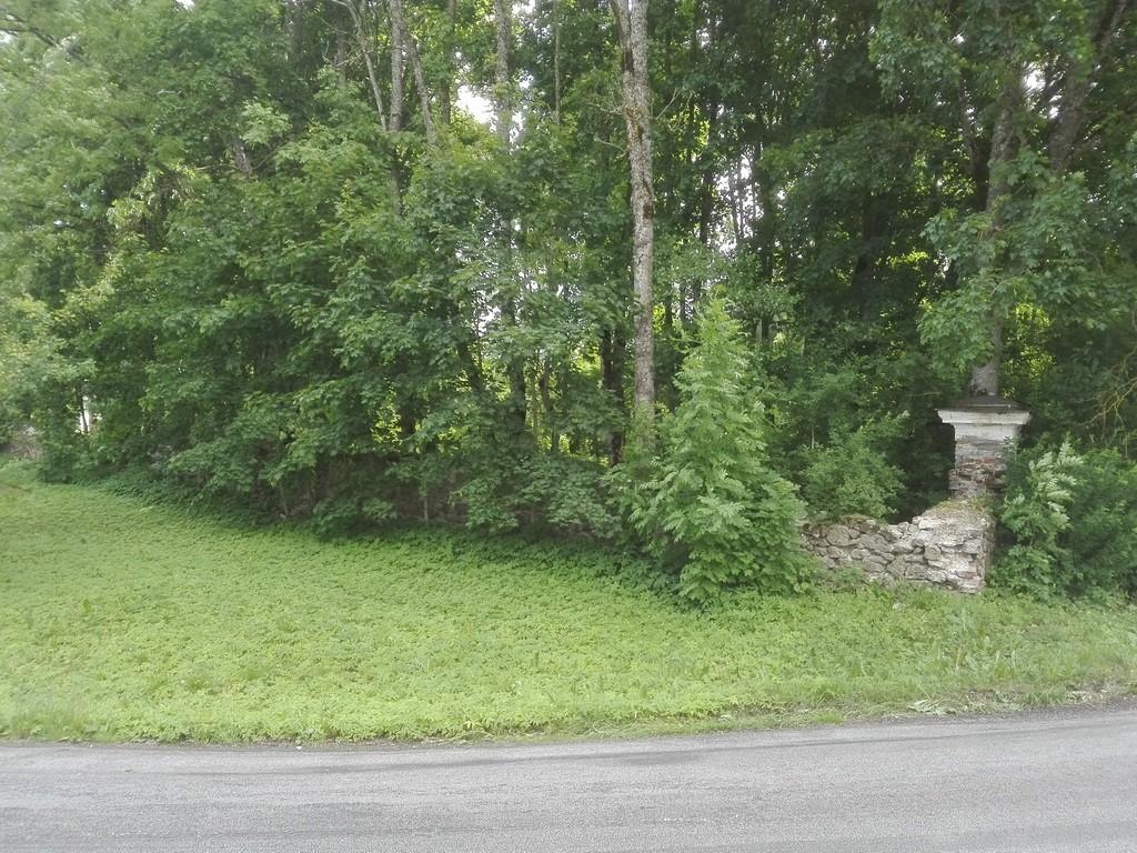 Kabala mõisa pargi piirdemüürid, mõisa puuviljaaia müür. Foto: K. Klandorf 09.06.2016.