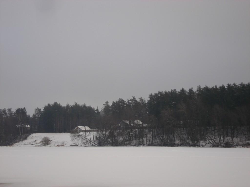 Vaade Sindi-Lodja III asulakoha põhjapoolsele osale Tammiste asulakohalt. Foto: Karin Vimberg, 26.01.2009.