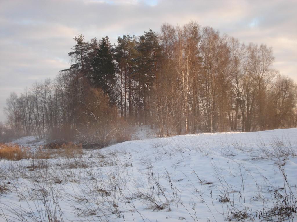 Vaade Kalmetimäele põhjast. Foto: Karin Vimberg, 23.01.2009.