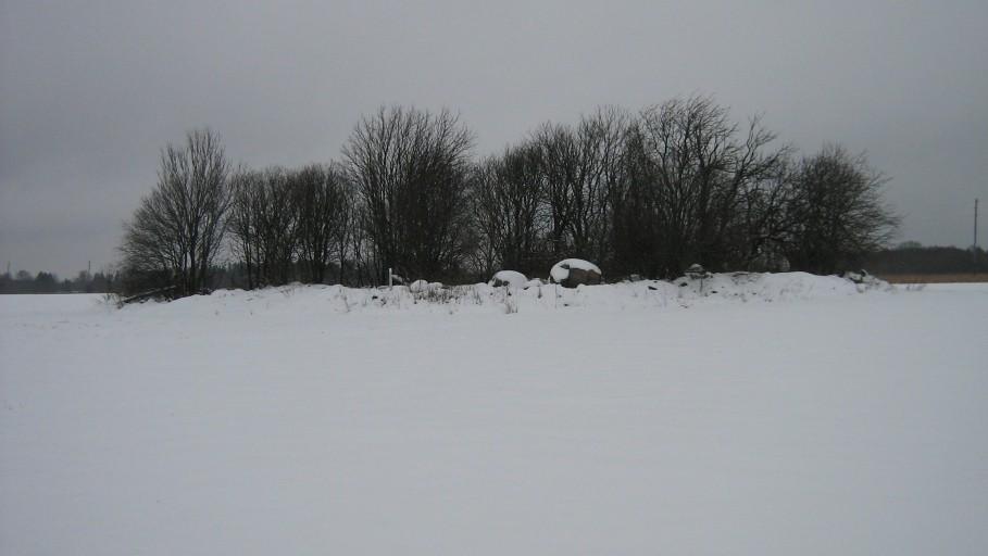 Vaade kalmele edelast. Foto: Ulla Kadakas, 28.01.2009.