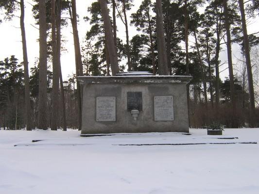 Vabadussõjas ja II maailmasõjas hukkunute ning terroriohvrite ühishaud, reg. nr 5767. Vaade põhjast. Foto: M.Abel, kuupäev 19.02.2009