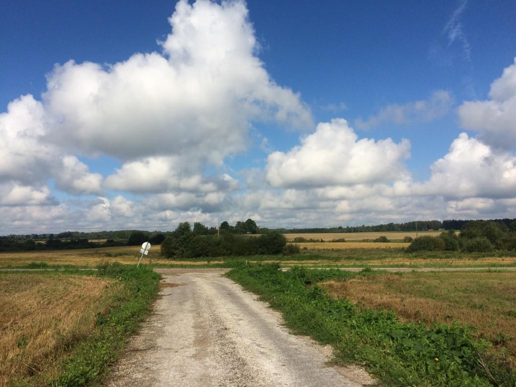 Asulakoht reg-nr 12845, 23.08.2016. Foto: Ingmar Noorlaid