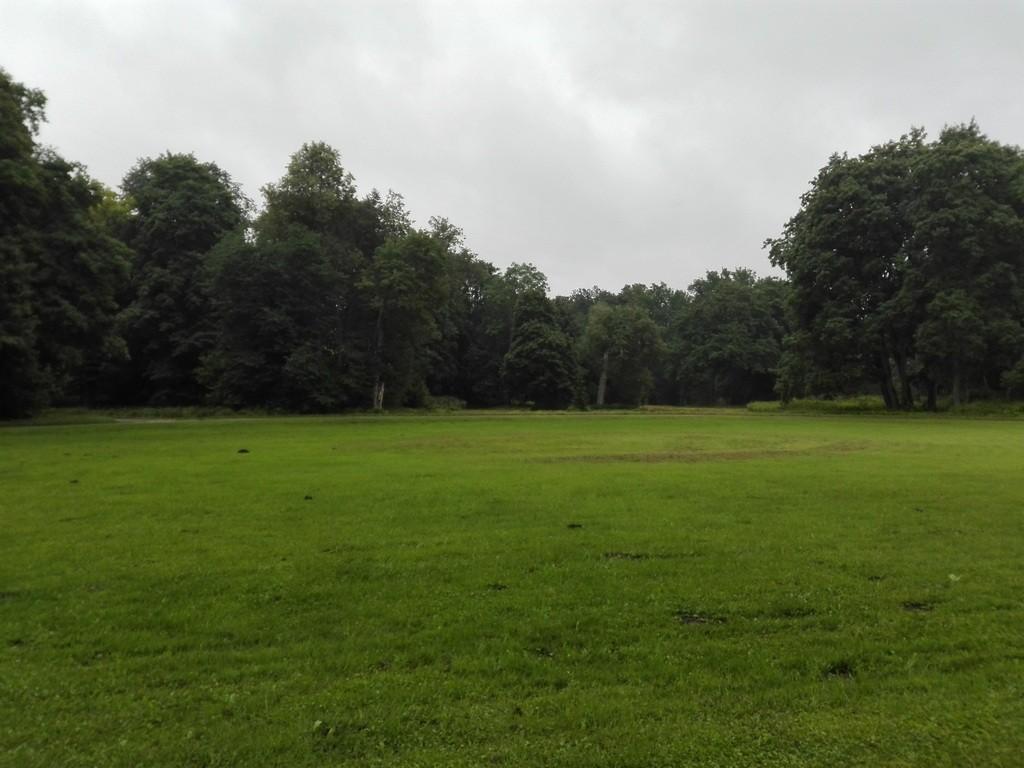 Esna mõisa pargi esiväljaku vaade. Foto: K. Klandorf 04.08.2016.
