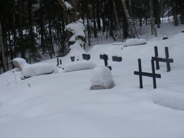Rogosi-Pütsepa kalmistu  Autor I. Raudvassar  Kuupäev  26.02.2009