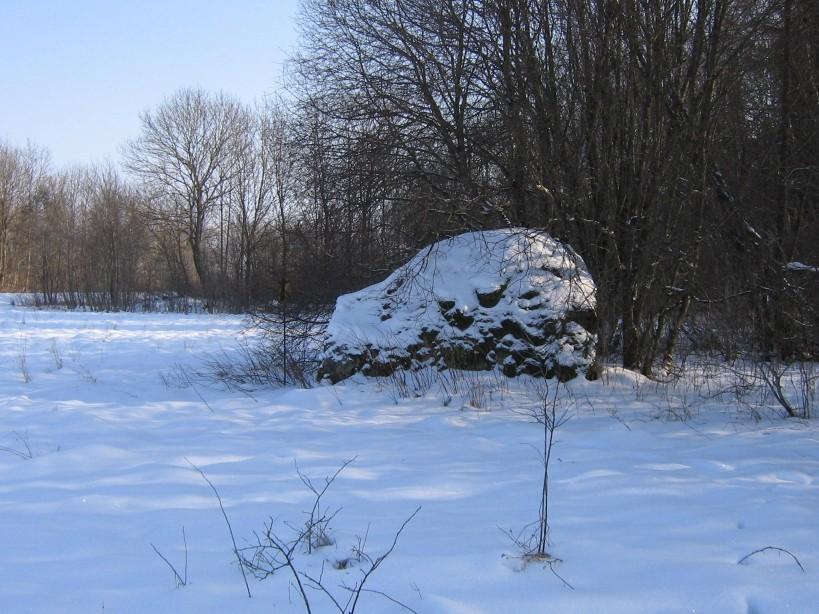 Vaade põhjast.  Autor Ulla Kadakas  Kuupäev  21.02.2009